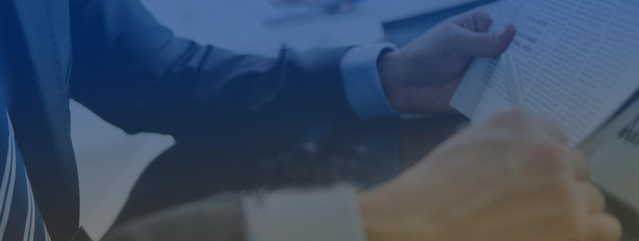 eClerx_InvestorRelation_Financials_PDF_Icon